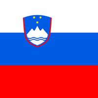 Онлайн-трансляция отборочного матча ЧМ-2022 Словения - Россия
